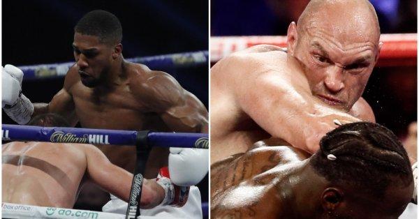 Двубой между шампиона на WBA, WBO, IBF и IBO Антъни
